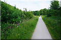 SK1555 : The Tissington Trail approaching the former Alsop en le Dale Station by Bill Boaden