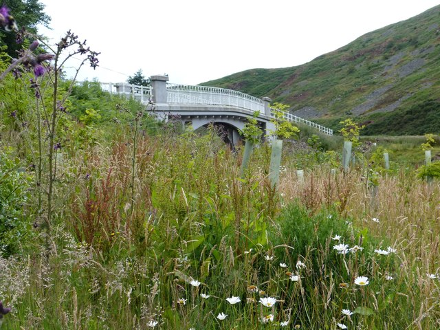 Peggy Bells Bridge, Breamish Valley