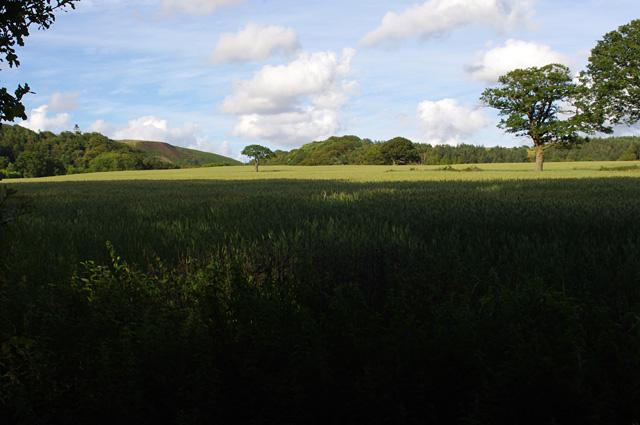Farmland at Woodacre