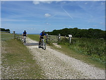 TQ1411 : Riding above Chalkpit Wood by Richard Law
