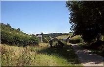SY3192 : Shapwick Grange Farm by Derek Harper