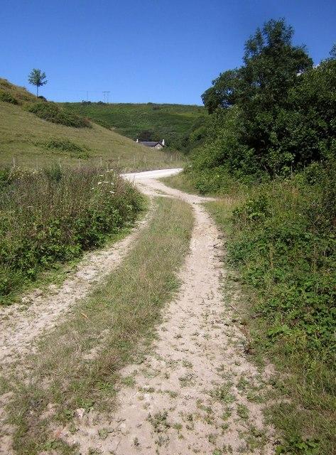Track and road, Alder Grove