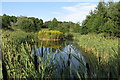 SP7534 : Pond by the woodland by Philip Jeffrey