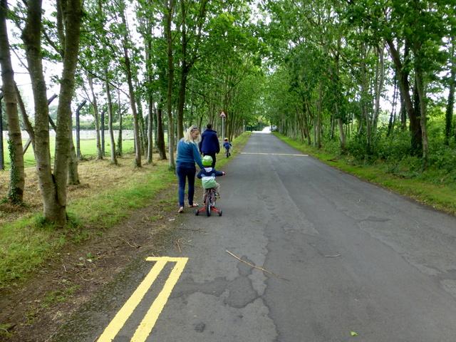 Avenue, Tannaghmore Gardens