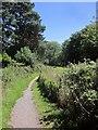 SY3293 : East Devon Way in Uplyme by Derek Harper