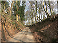 SU7985 : Lane through the woods by Des Blenkinsopp
