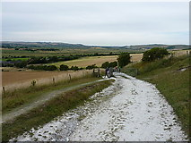 TQ4305 : Climbing onto Itford Hill by Richard Law
