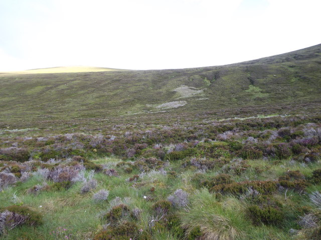 Tussocky moorland in Coire nan Con in Glencalvie Forest