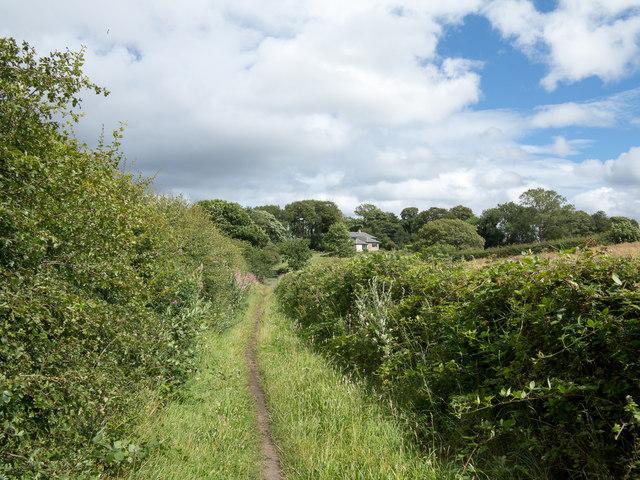 Footpath near High Urpeth