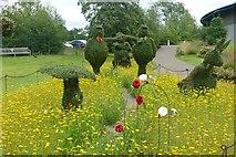 SE2853 : Wonderland Topiary Garden by Graham Hogg