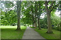 SE2954 : Tree-lined path in Valley Gardens by Graham Hogg