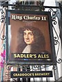SO8554 : Inn sign, King Charles II by Philip Halling