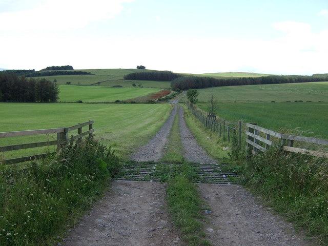 Farm track off the Devil's Causeway