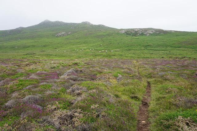 Path towards Carn Llidi