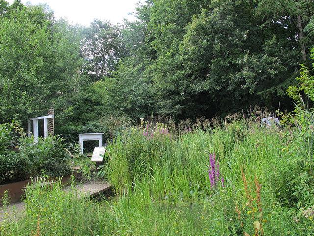 Hollybush Conservation Centre: pond