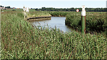 TG4001 : The confluence of the River Chet and the River Yare by Evelyn Simak