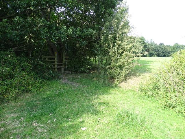 Path into Hood Wood