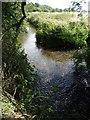 SE3010 : The River Dearne north of Darton by Neil Theasby