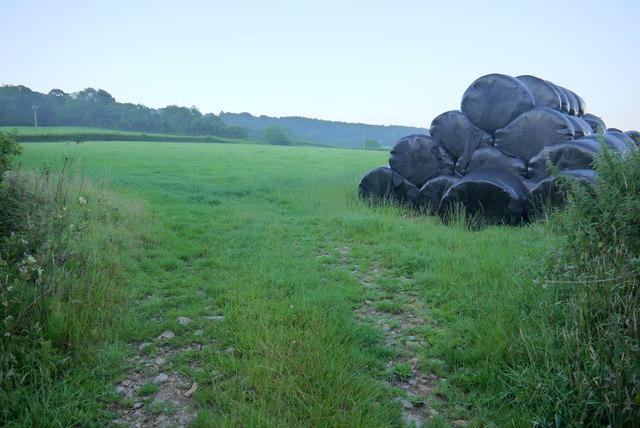 Field Entrance near Bidwell Farm