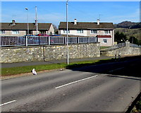 ST3090 : Houses in the SE corner of Pillmawr Circle, Malpas, Newport by Jaggery