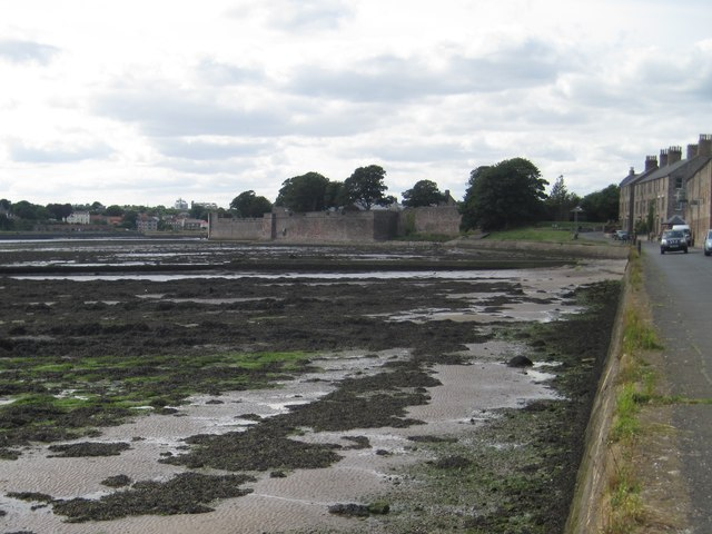 Berwick ramparts at low tide