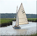 TG4602 : Sailing down the River Waveney by Evelyn Simak