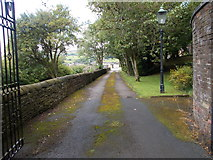 SE0424 : Driveway to Magson House - Greystones Road by Betty Longbottom