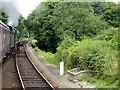TG1141 : North Norfolk Railway, West of Weybourne by David Dixon
