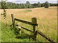 TF9833 : Stile and Barbed Wire Fence near Thursford by David Dixon
