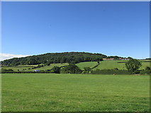 NZ9404 : An empty camping field at Middlewood Farm by steven ruffles
