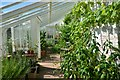 NY6128 : Acorn Bank - Walled greenhouse by Ashley Dace