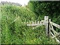 SE0322 : Footpath blocked by vegetation at Long Royd, Sowerby by Humphrey Bolton