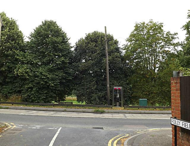 Folly Fields, Wheathampstead