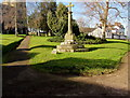 SO5924 : Medieval cross in a Ross-on-Wye churchyard by Jaggery