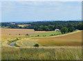 SU4381 : Winding lane, Farnborough, Berkshire by Oswald Bertram