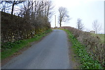 SD7186 : Lane in Dentdale by N Chadwick