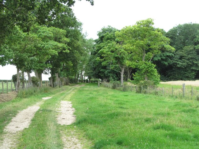 Grindon Lane