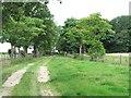 NZ3222 : Grindon Lane by Gordon Hatton