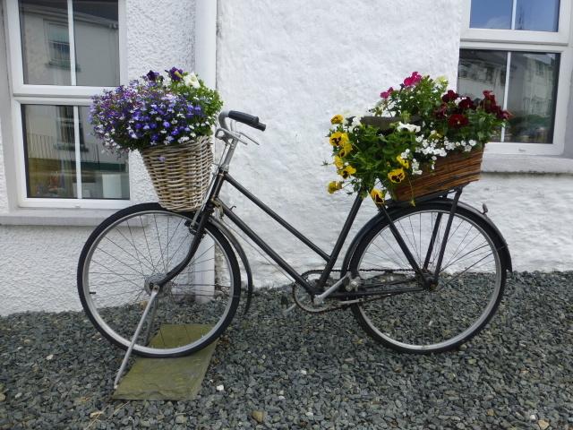 Old bicycle, Ramelton