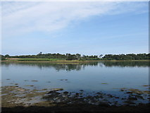 J5849 : View east from the Eagleson Hide across Castleward Bay by Eric Jones