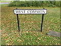 TL1313 : West Common sign by Adrian Cable