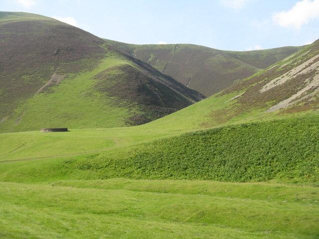 Sheep fold, in the Mennock Pass