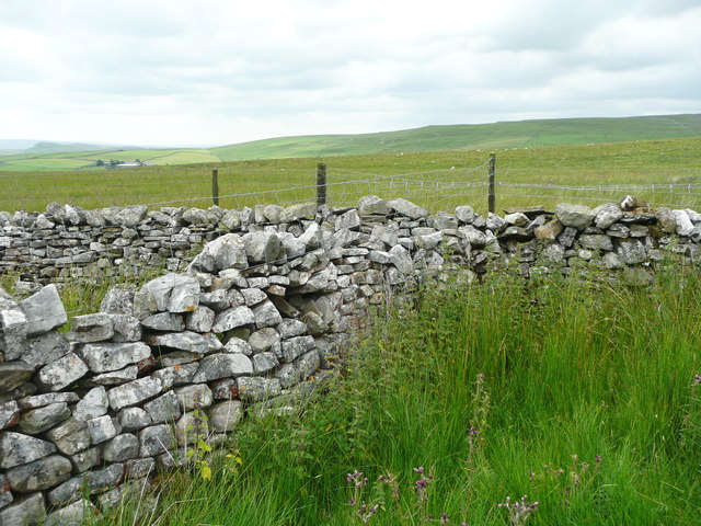 Wall junction between Fountains Fell and Rough Lands, Malham Moor