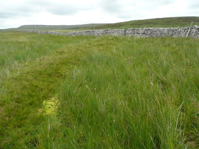 On Rough Lands approaching the wall, Malham Moor