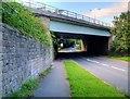 SD5524 : M6 Motorway passing over Wigan Road by David Dixon