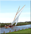 TG4319 : Sailing on the River Thurne by Evelyn Simak