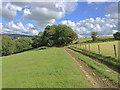 SS6339 : Lane to Button Bridge by Hugh Craddock