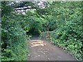 SS6338 : Button Bridge by Hugh Craddock