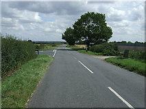 TL1435 : Stondon Road by JThomas