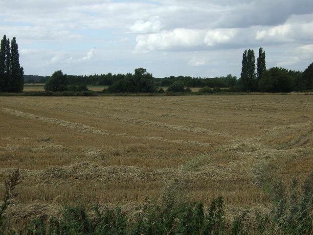 Stubble field near Broom